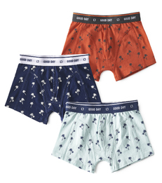 boxer shorts boys 3-pieces palm all over print Little Label